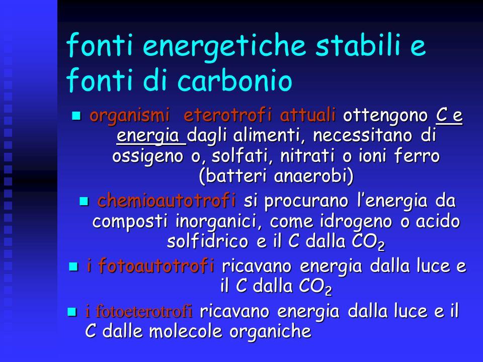 fonti energetiche stabili e fonti di carbonio organismi eterotrofi attuali ottengono C e energia dagli alimenti, necessitano di ossigeno o, solfati, n