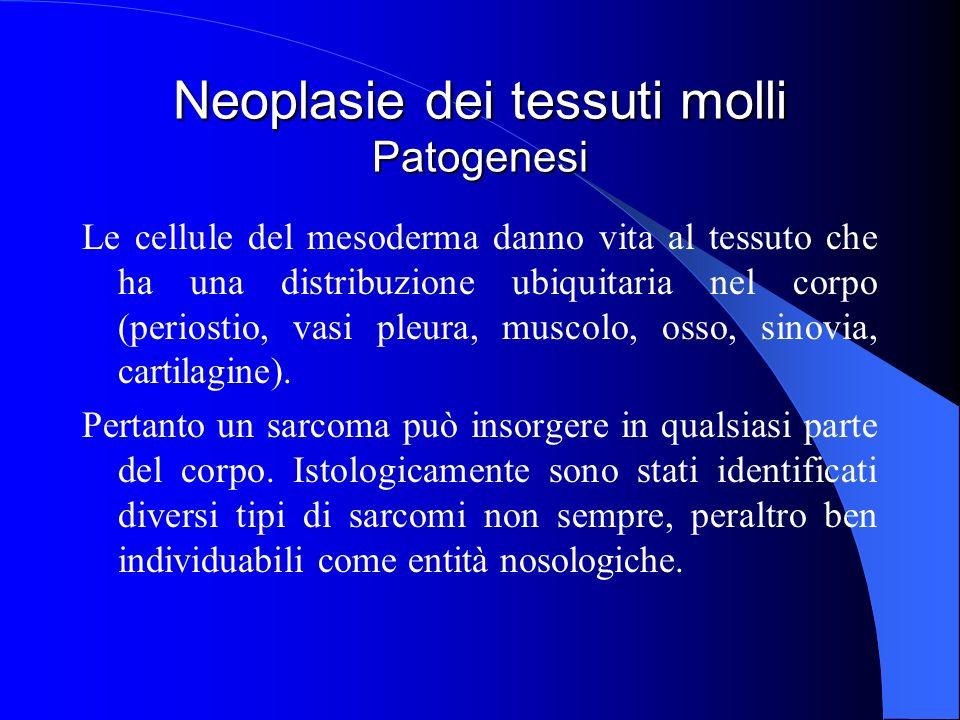 Neoplasie dei tessuti molli Patogenesi Le cellule del mesoderma danno vita al tessuto che ha una distribuzione ubiquitaria nel corpo (periostio, vasi pleura, muscolo, osso, sinovia, cartilagine).