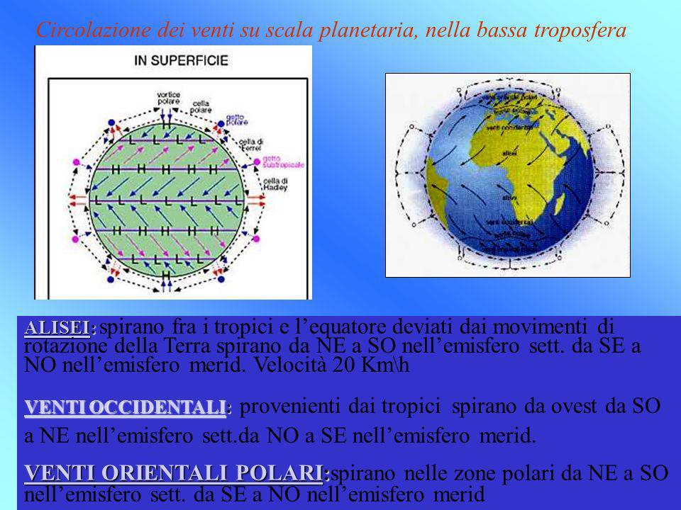 Circolazione dei venti su scala planetaria, nella bassa troposfera ALISEIALISEI: ALISEI: spirano fra i tropici e lequatore deviati dai movimenti di ro