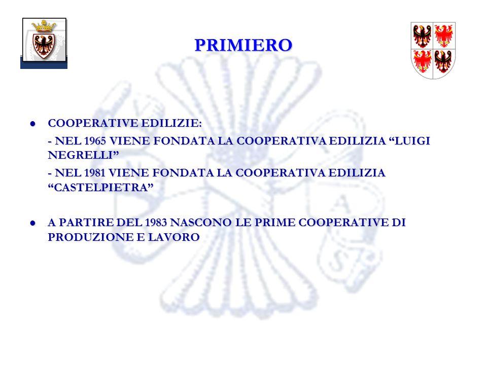 18 PRIMIERO COOPERATIVE EDILIZIE: COOPERATIVE EDILIZIE: - NEL 1965 VIENE FONDATA LA COOPERATIVA EDILIZIA LUIGI NEGRELLI - NEL 1981 VIENE FONDATA LA COOPERATIVA EDILIZIA CASTELPIETRA A PARTIRE DEL 1983 NASCONO LE PRIME COOPERATIVE DI PRODUZIONE E LAVORO A PARTIRE DEL 1983 NASCONO LE PRIME COOPERATIVE DI PRODUZIONE E LAVORO