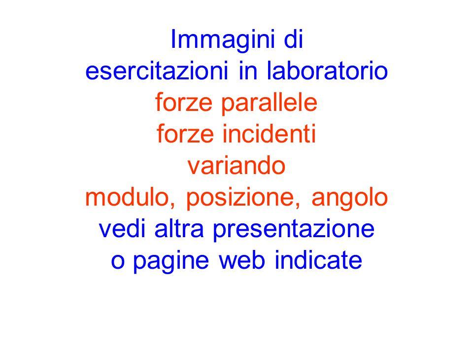 Immagini di esercitazioni in laboratorio forze parallele forze incidenti variando modulo, posizione, angolo vedi altra presentazione o pagine web indi