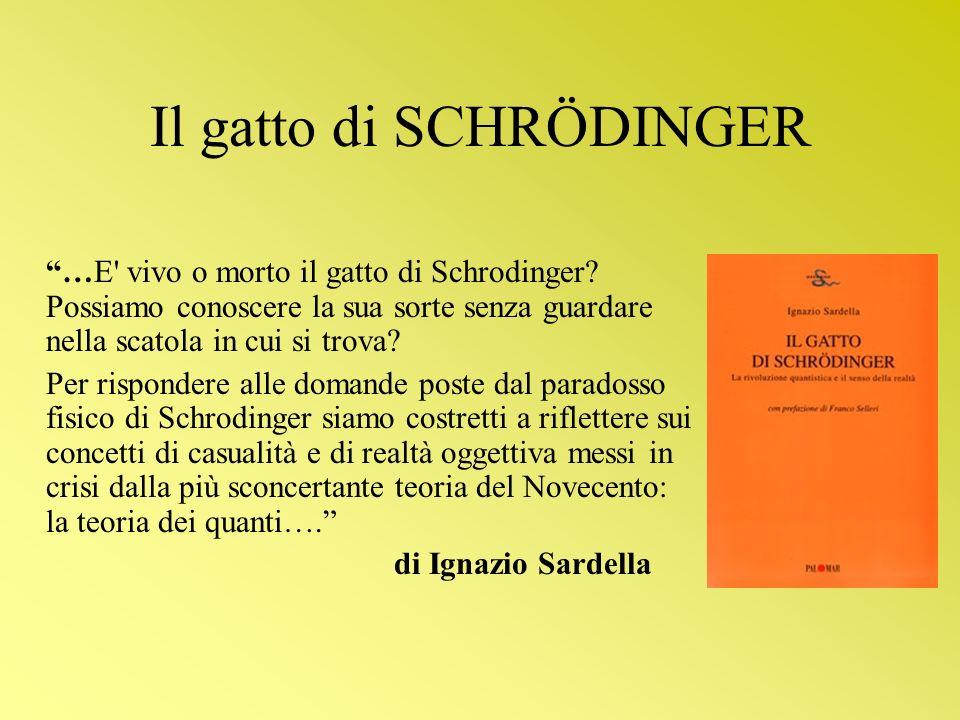…E' vivo o morto il gatto di Schrodinger? Possiamo conoscere la sua sorte senza guardare nella scatola in cui si trova? Per rispondere alle domande po