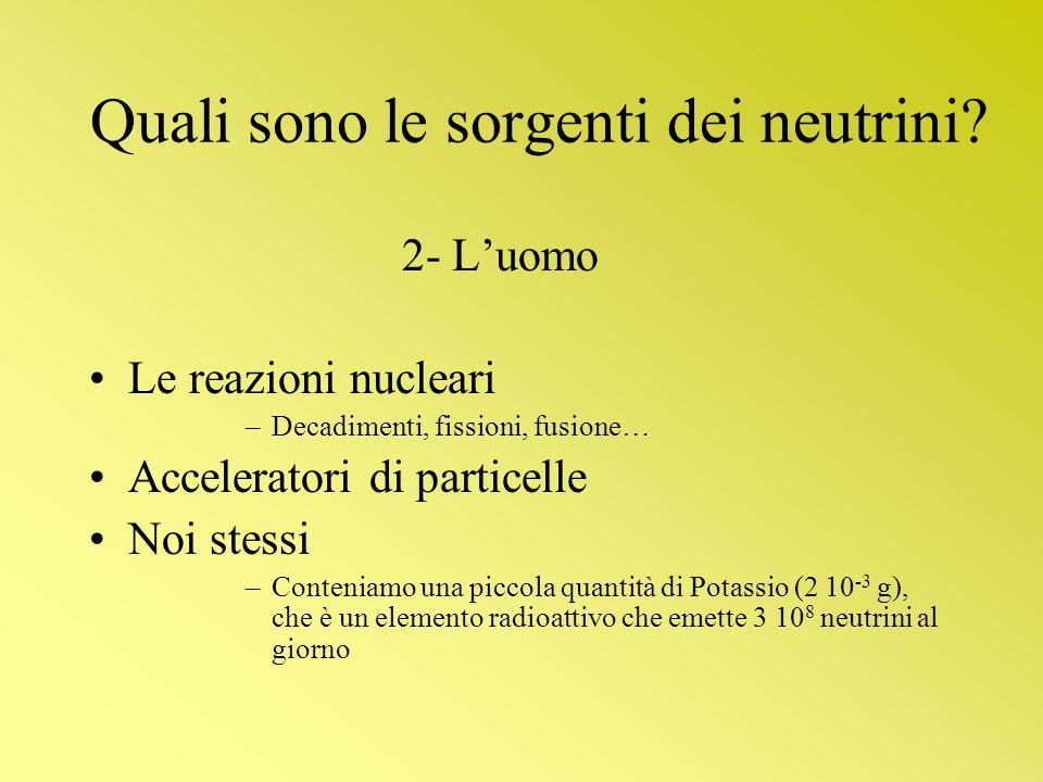 Quali sono le sorgenti dei neutrini? 2- Luomo Le reazioni nucleari –Decadimenti, fissioni, fusione… Acceleratori di particelle Noi stessi –Conteniamo