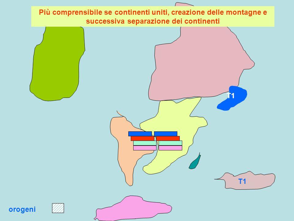 T1 orogeni Più comprensibile se continenti uniti, creazione delle montagne e successiva separazione dei continenti