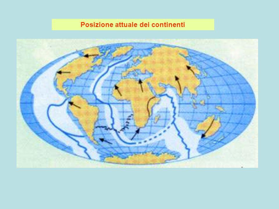 Dorsale oceanica dalla quale esce magma che si espande ai due lati generando fondale oceanico con registrata la direzione del campo magnetico esistente in quel tempo:bande simmetriche alla dorsale con magnetismo diretto(come attuale:azzurro) e inverso(verde) zolla1 zolla2