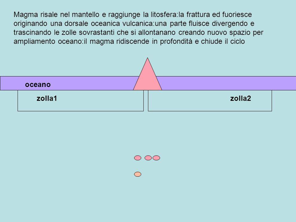 Magma risale nel mantello e raggiunge la litosfera:la frattura ed fuoriesce originando una dorsale oceanica vulcanica:una parte fluisce divergendo e t