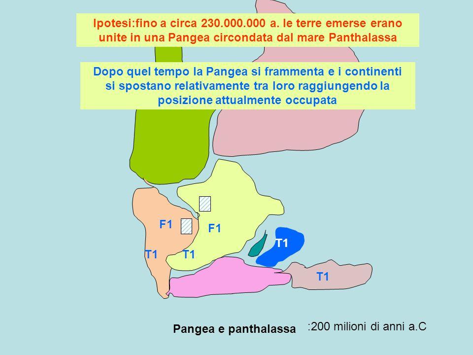 Pangea e panthalassa :200 milioni di anni a.C F1 T1 Ipotesi:fino a circa 230.000.000 a. le terre emerse erano unite in una Pangea circondata dal mare