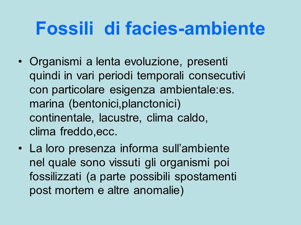 Fossili di facies-ambiente Organismi a lenta evoluzione, presenti quindi in vari periodi temporali consecutivi con particolare esigenza ambientale:es.