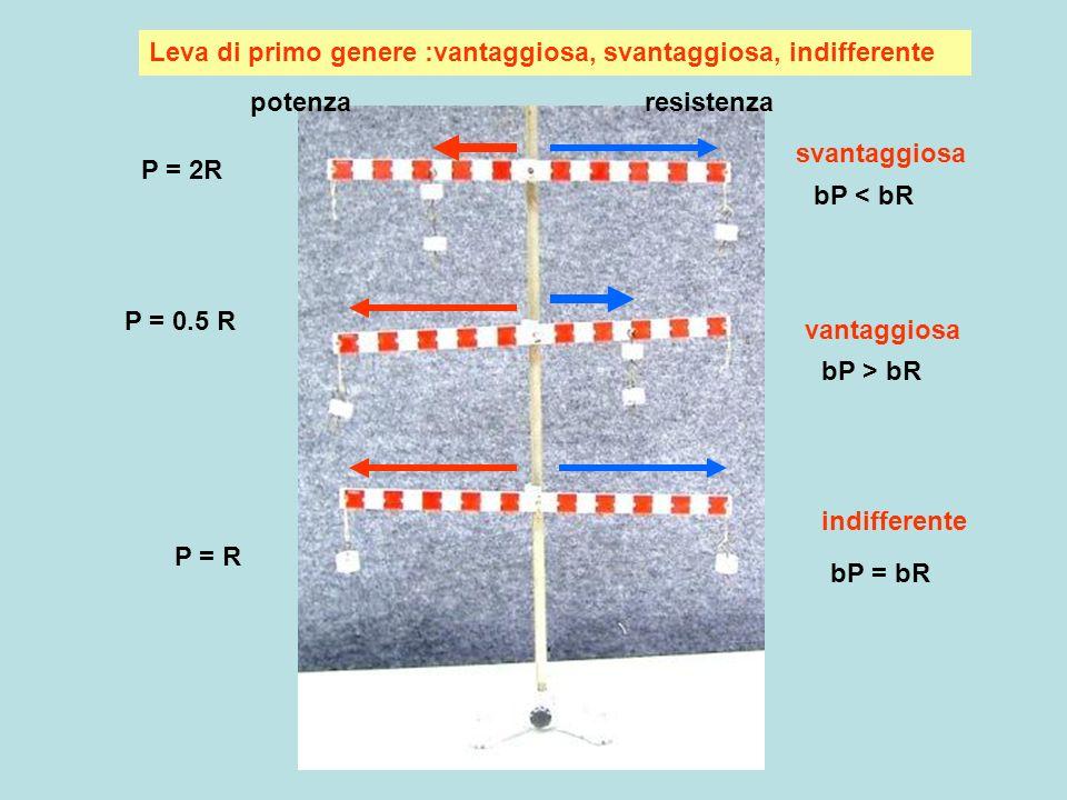 Leva secondo genere : sempre vantaggiosa : bP > bR potenza resistenza bP bR Leva in equilibrio: nessuna forza