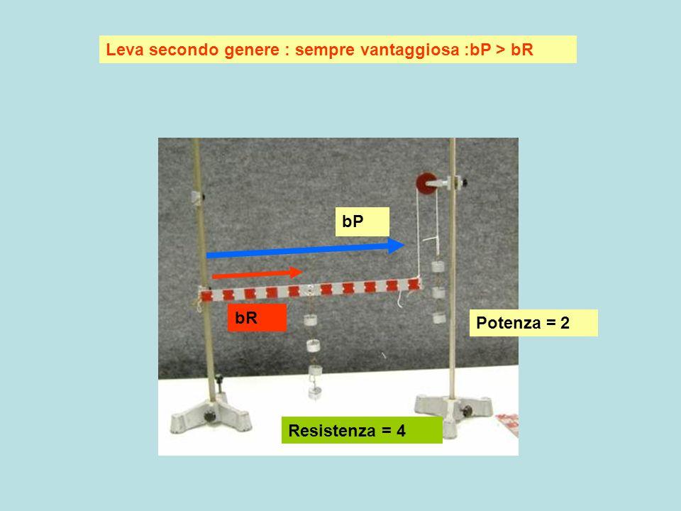 Leva terzo genere : sempre svantaggiosa : bP < bR Leva in equilibrio: nessuna forza applicata bP bR potenza resistenza