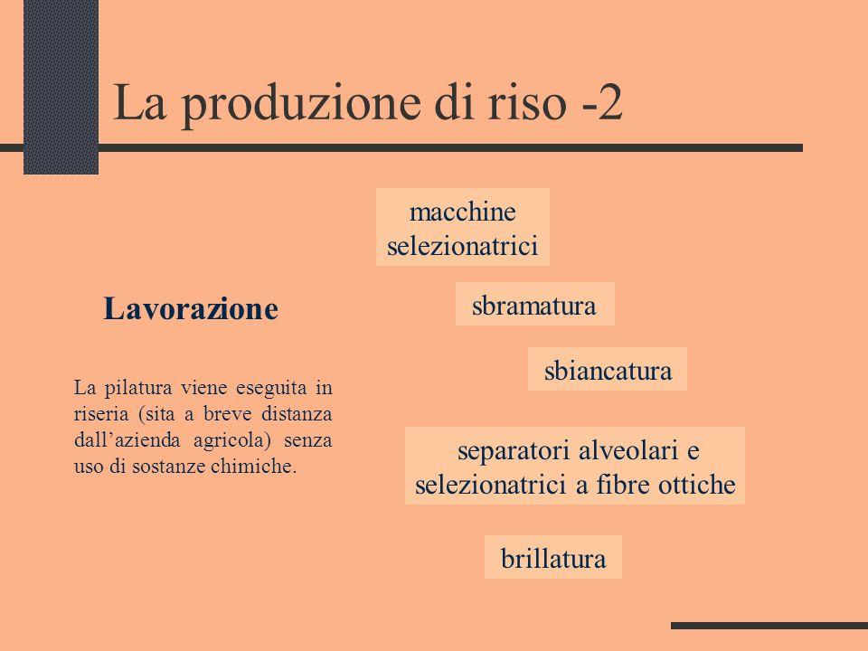 La produzione di riso -2 macchine selezionatrici separatori alveolari e selezionatrici a fibre ottiche sbramatura brillatura Lavorazione La pilatura v