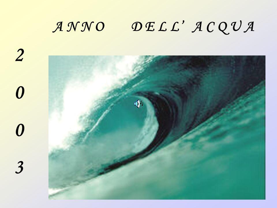 20032003 A N N O D E L L A C Q U A