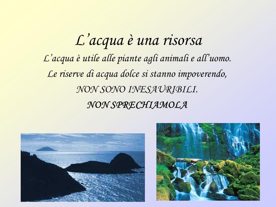 Lacqua è una risorsa Lacqua è utile alle piante agli animali e alluomo. Le riserve di acqua dolce si stanno impoverendo, NON SONO INESAURIBILI. NON SP