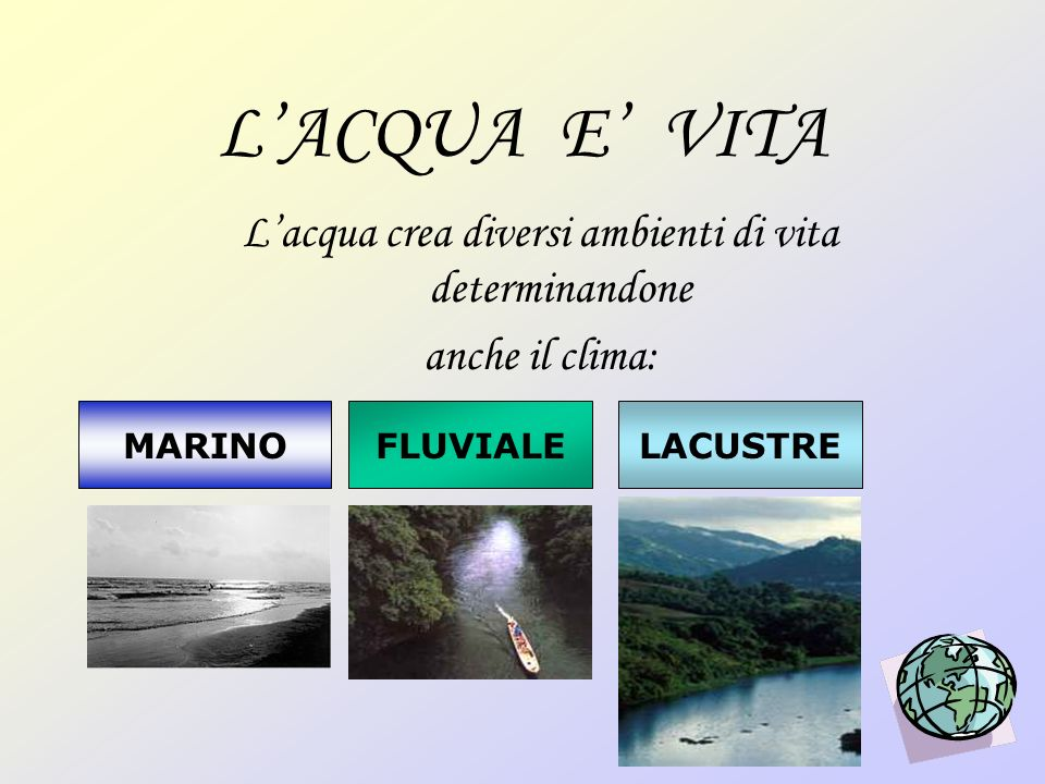 LACQUA E VITA Lacqua crea diversi ambienti di vita determinandone anche il clima: MARINOFLUVIALELACUSTRE