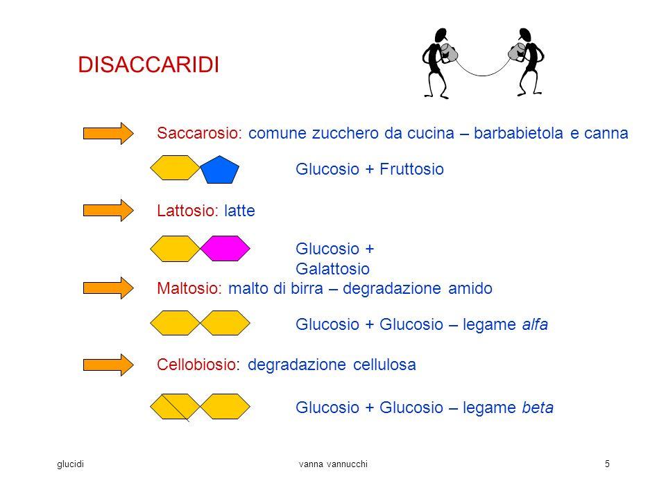 glucidivanna vannucchi5 DISACCARIDI Saccarosio: comune zucchero da cucina – barbabietola e canna Glucosio + Fruttosio Lattosio: latte Glucosio + Galattosio Maltosio: malto di birra – degradazione amido Glucosio + Glucosio – legame alfa Cellobiosio: degradazione cellulosa Glucosio + Glucosio – legame beta