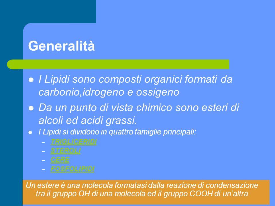 Trigliceridi 1 I trigliceridi sono esteri della glicerina e degli acidi grassi I trigliceridi sono molto diffusi negli alimenti: lolio di oliva è quasi esclusivamente composto da queste sostanze.