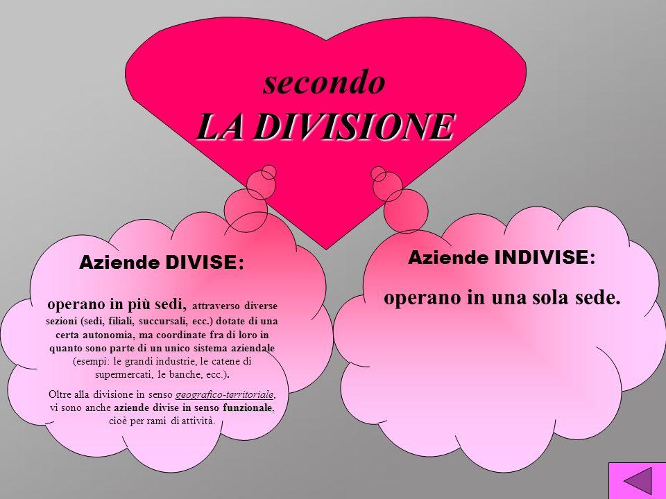 LA DIVISIONE secondo LA DIVISIONE Aziende DIVISE : operano in più sedi, attraverso diverse sezioni (sedi, filiali, succursali, ecc.) dotate di una cer