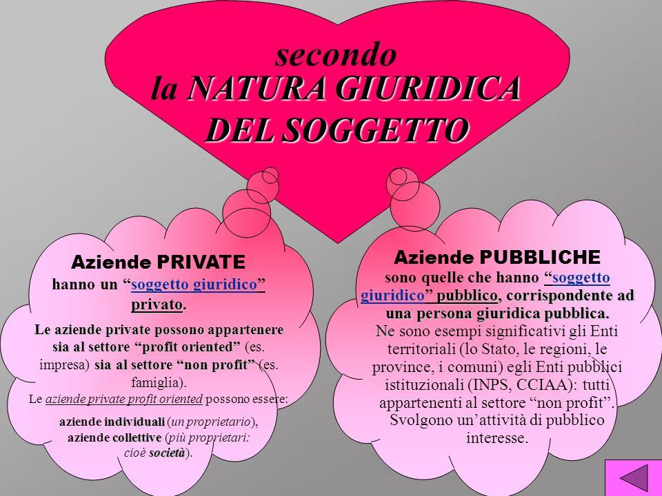 NATURA GIURIDICA secondo la NATURA GIURIDICA DEL SOGGETTO privato. Le aziende private possono appartenere sia al settore profit oriented sia al settor