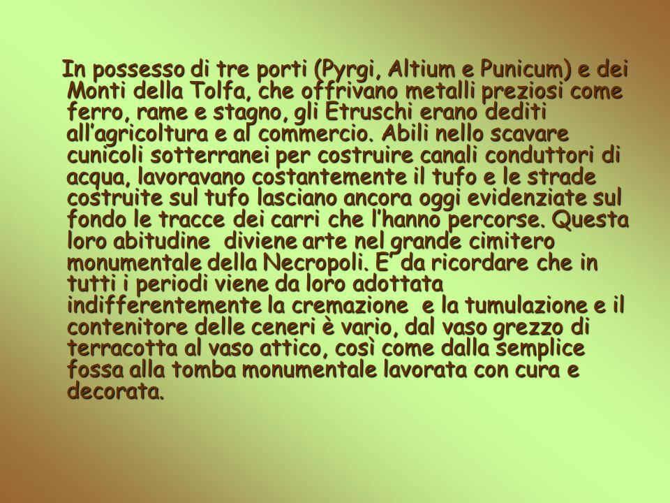 In possesso di tre porti (Pyrgi, Altium e Punicum) e dei Monti della Tolfa, che offrivano metalli preziosi come ferro, rame e stagno, gli Etruschi erano dediti allagricoltura e al commercio.