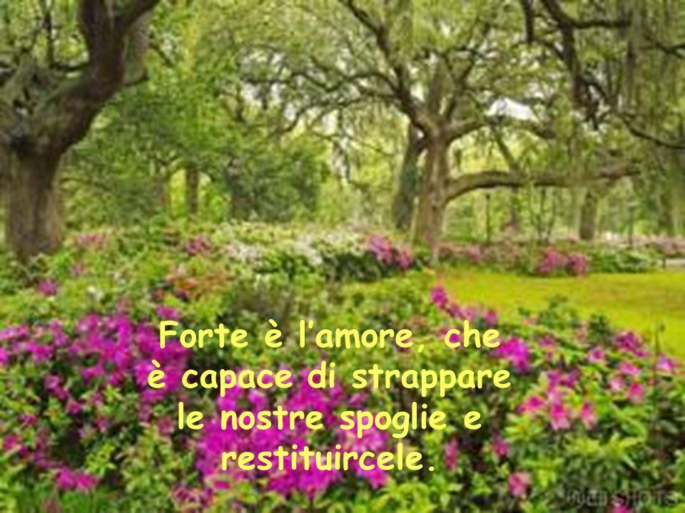 Forte è la morte, a cui nessun uomo è capace di resistere.