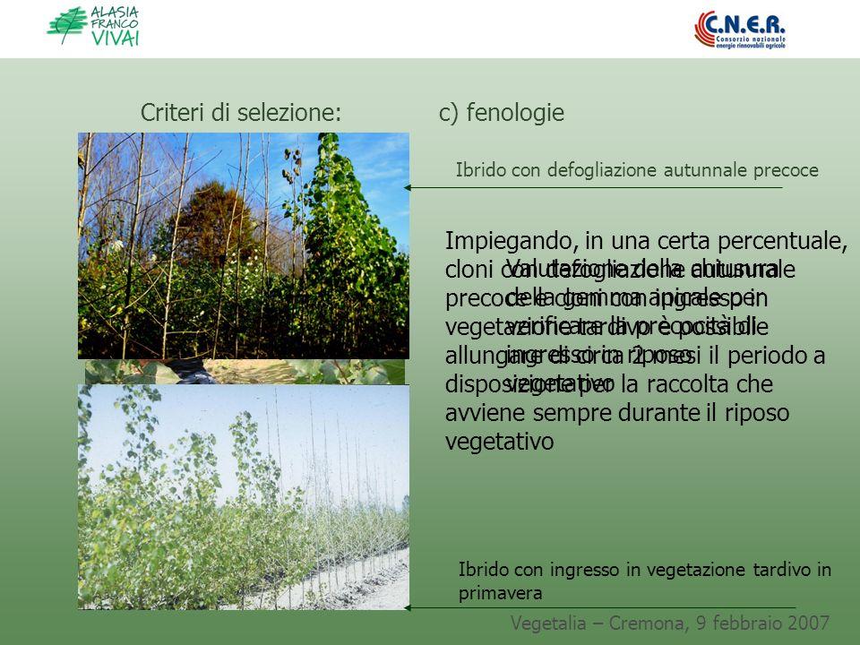 Vegetalia – Cremona, 9 febbraio 2007 Valutazione della chiusura della gemma apicale per verificare la precocità di ingresso in riposo vegetativo Crite