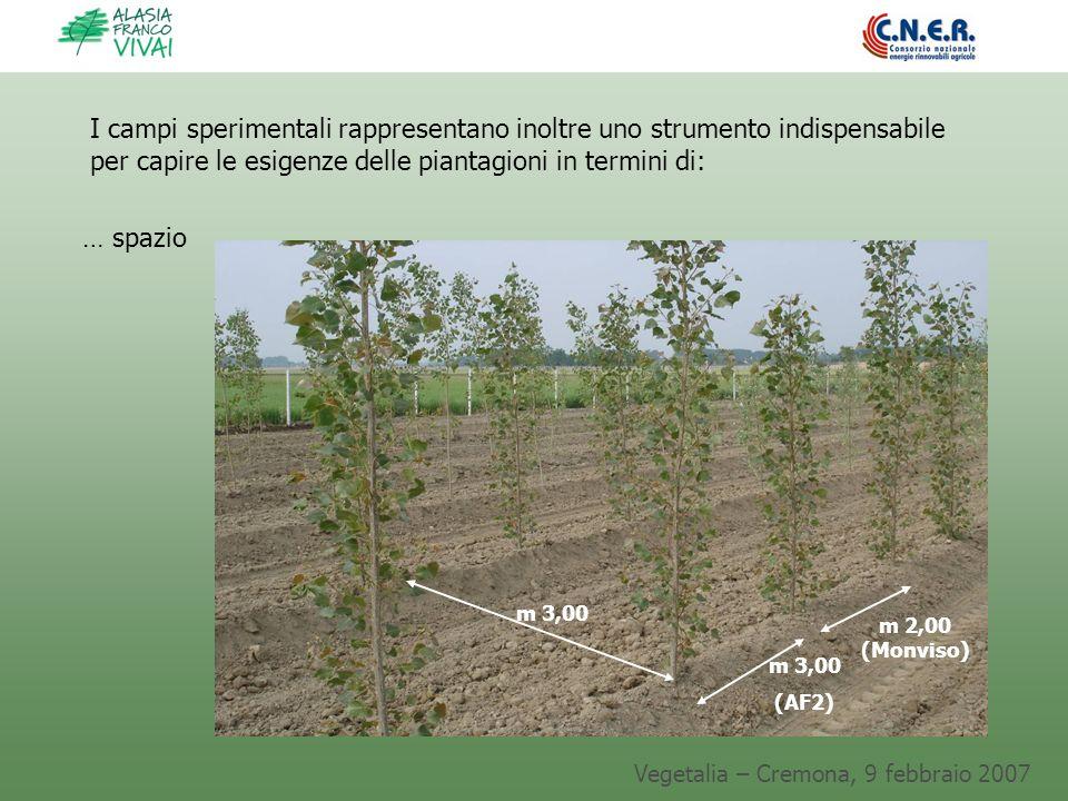 Vegetalia – Cremona, 9 febbraio 2007 I campi sperimentali rappresentano inoltre uno strumento indispensabile per capire le esigenze delle piantagioni