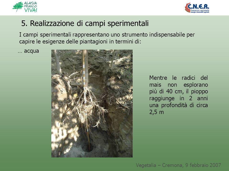 Vegetalia – Cremona, 9 febbraio 2007 5. Realizzazione di campi sperimentali I campi sperimentali rappresentano uno strumento indispensabile per capire