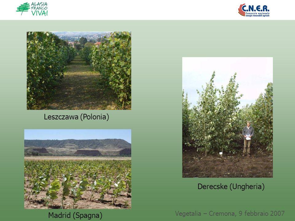 Vegetalia – Cremona, 9 febbraio 2007 Madrid (Spagna) Leszczawa (Polonia) Derecske (Ungheria)