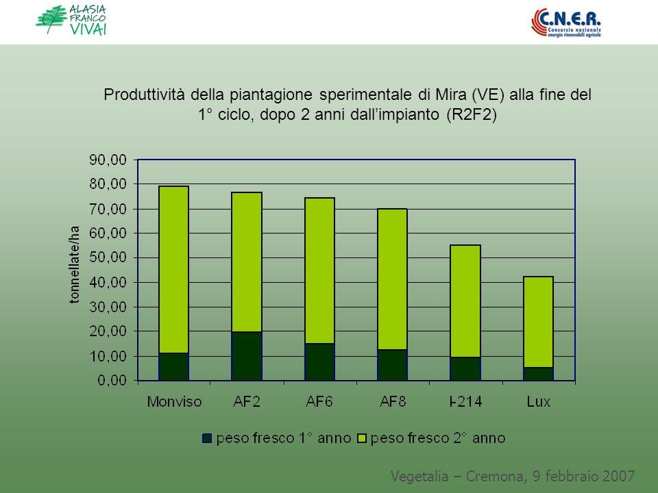 Vegetalia – Cremona, 9 febbraio 2007 Produttività della piantagione sperimentale di Mira (VE) alla fine del 1° ciclo, dopo 2 anni dallimpianto (R2F2)