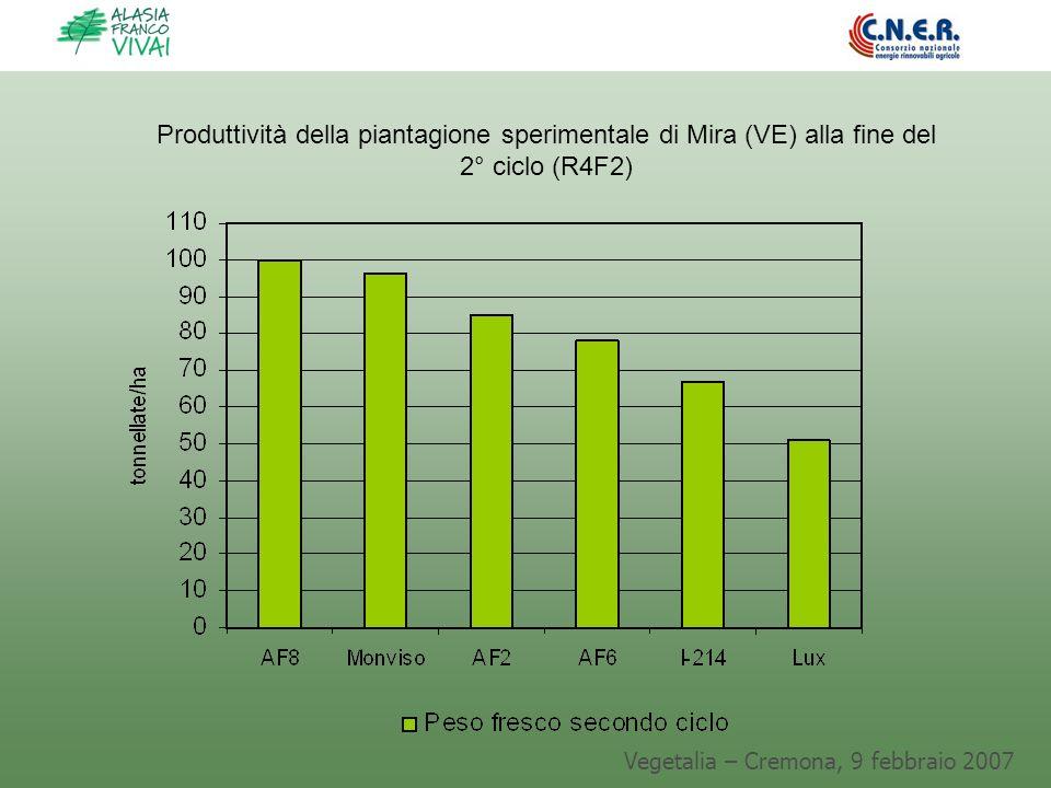 Vegetalia – Cremona, 9 febbraio 2007 Produttività della piantagione sperimentale di Mira (VE) alla fine del 2° ciclo (R4F2)
