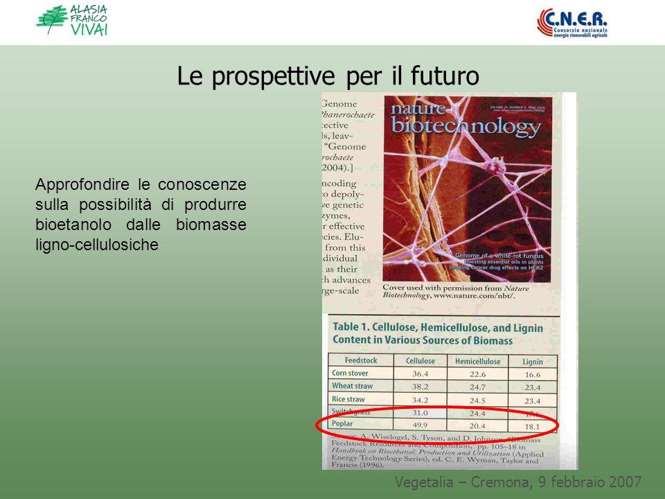 Vegetalia – Cremona, 9 febbraio 2007 Le prospettive per il futuro Approfondire le conoscenze sulla possibilità di produrre bioetanolo dalle biomasse l