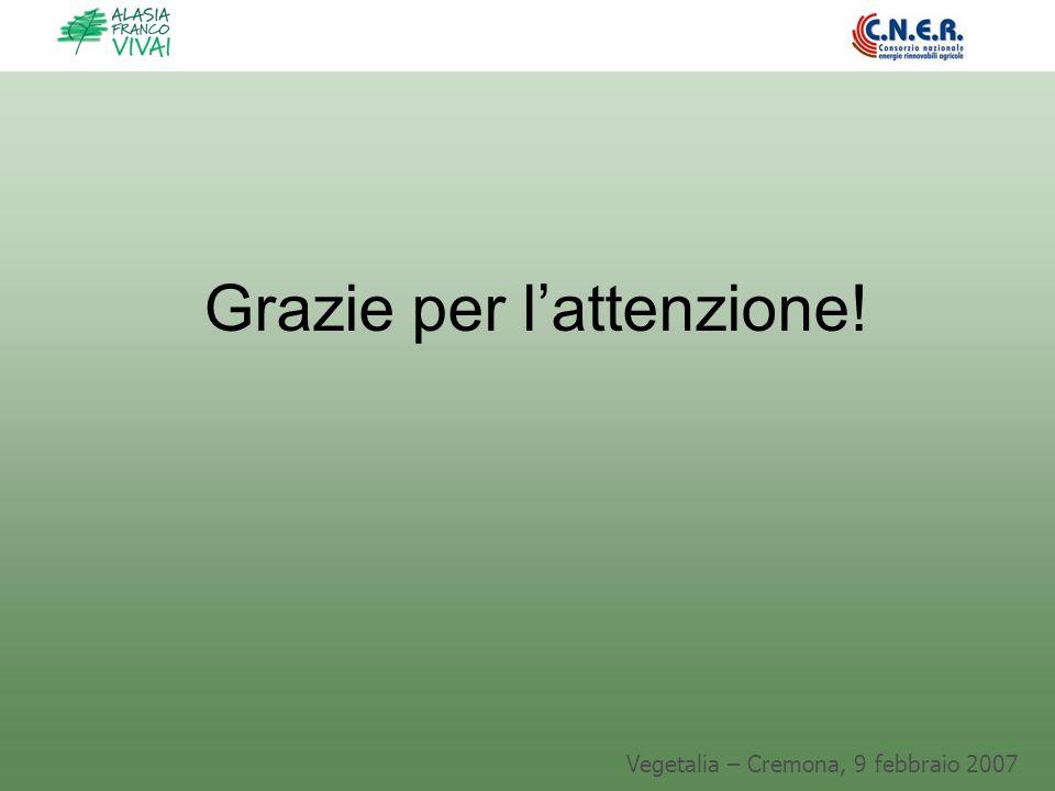 Vegetalia – Cremona, 9 febbraio 2007 Grazie per lattenzione!