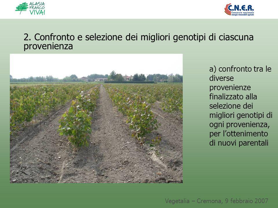 Vegetalia – Cremona, 9 febbraio 2007 2. Confronto e selezione dei migliori genotipi di ciascuna provenienza a) confronto tra le diverse provenienze fi