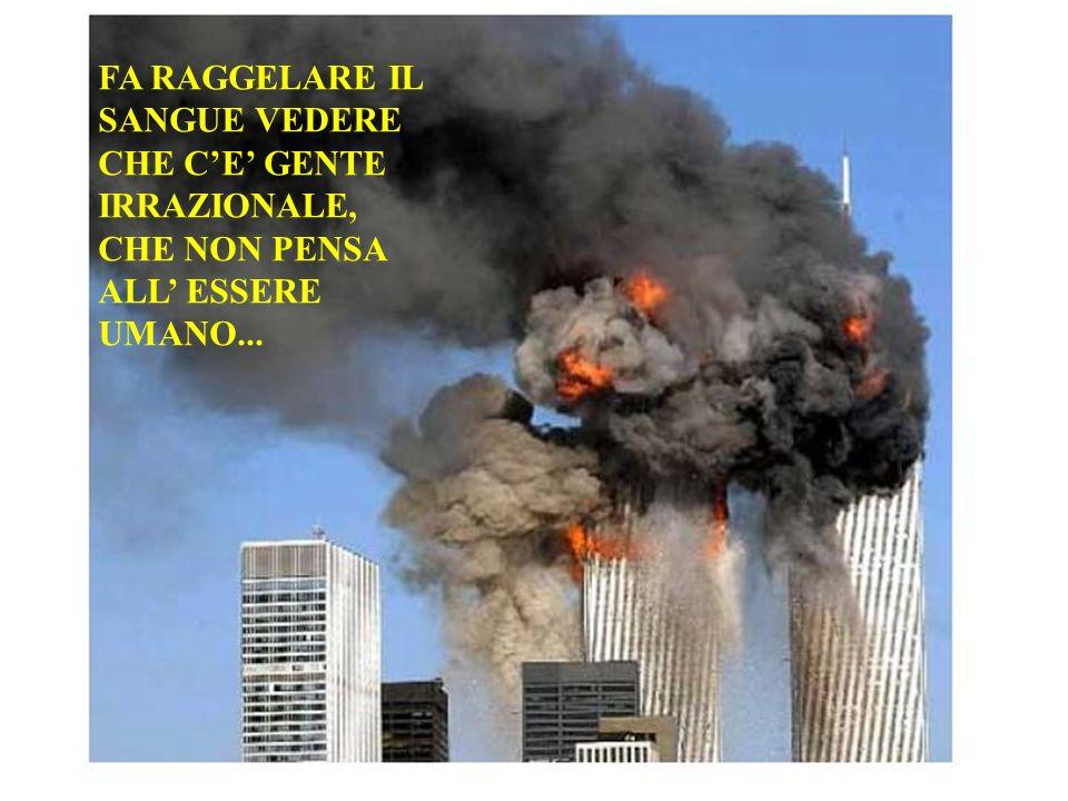 FA RAGGELARE IL SANGUE VEDERE CHE CE GENTE IRRAZIONALE, CHE NON PENSA ALL ESSERE UMANO...