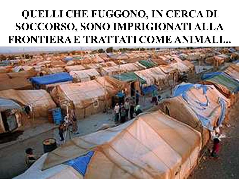 QUELLI CHE FUGGONO, IN CERCA DI SOCCORSO, SONO IMPRIGIONATI ALLA FRONTIERA E TRATTATI COME ANIMALI...