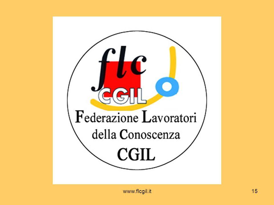 www.flcgil.it15