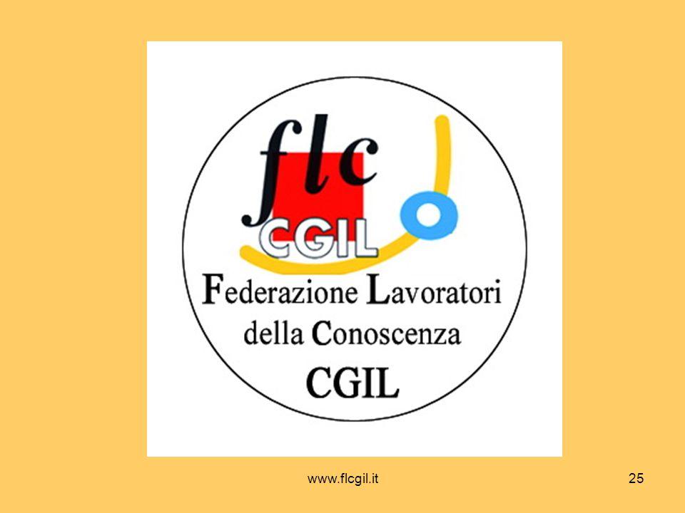 www.flcgil.it25