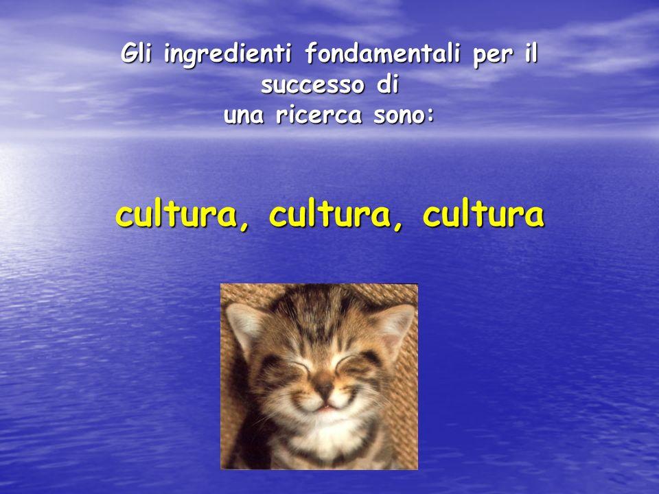 Gli ingredienti fondamentali per il successo di una ricerca sono: cultura, cultura, cultura