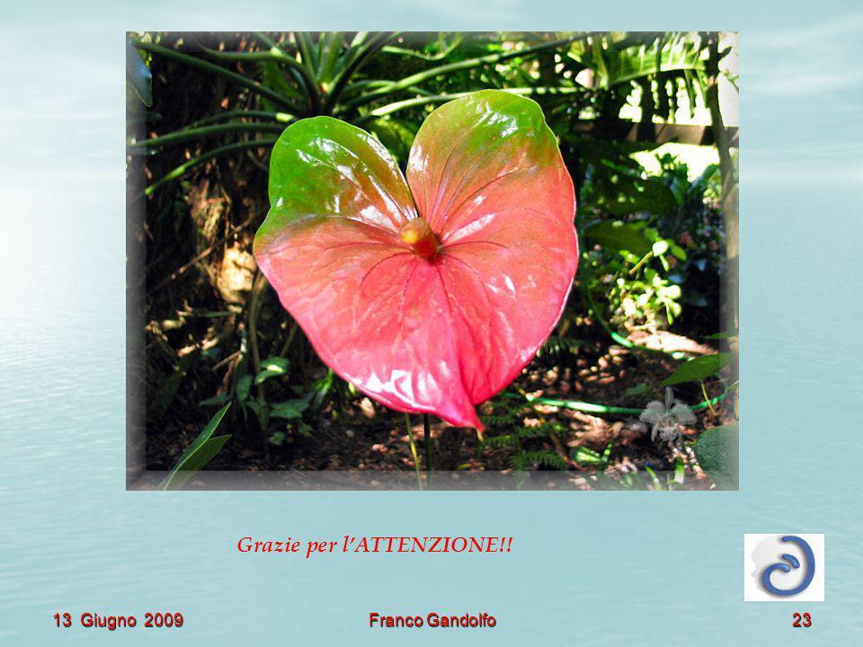 13 Giugno 2009Franco Gandolfo23 Grazie per lATTENZIONE!!