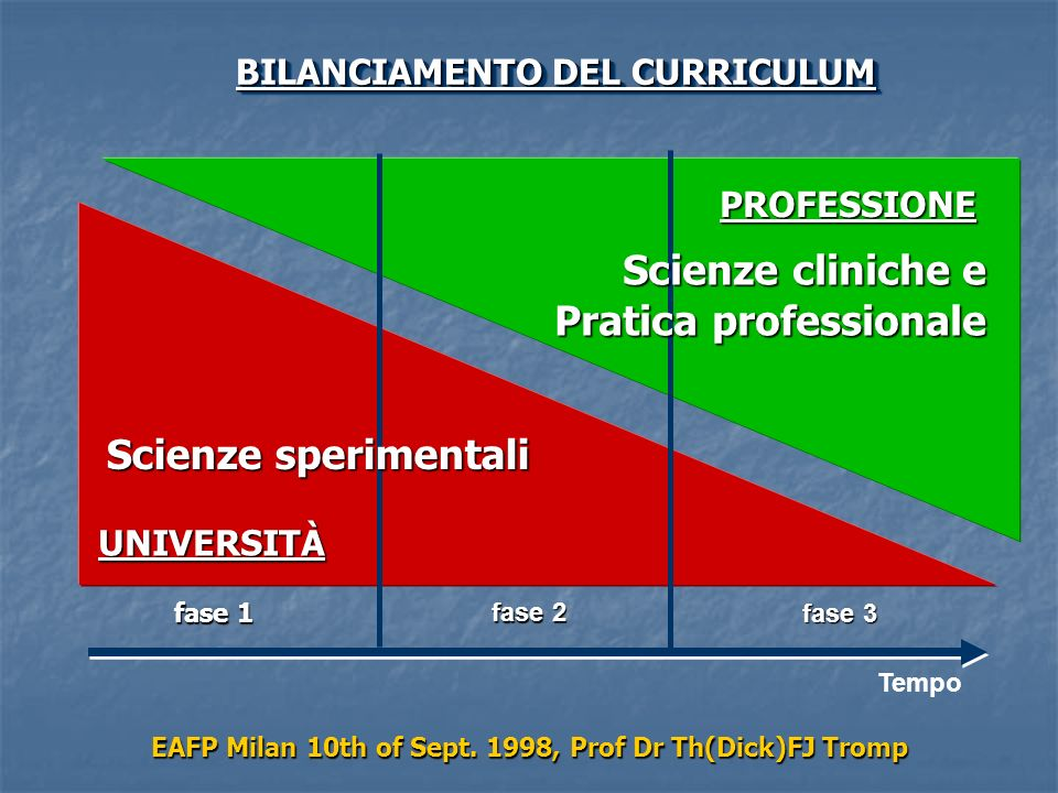 PROFESSIONE UNIVERSITÀ BILANCIAMENTO DEL CURRICULUM EAFP Milan 10th of Sept.