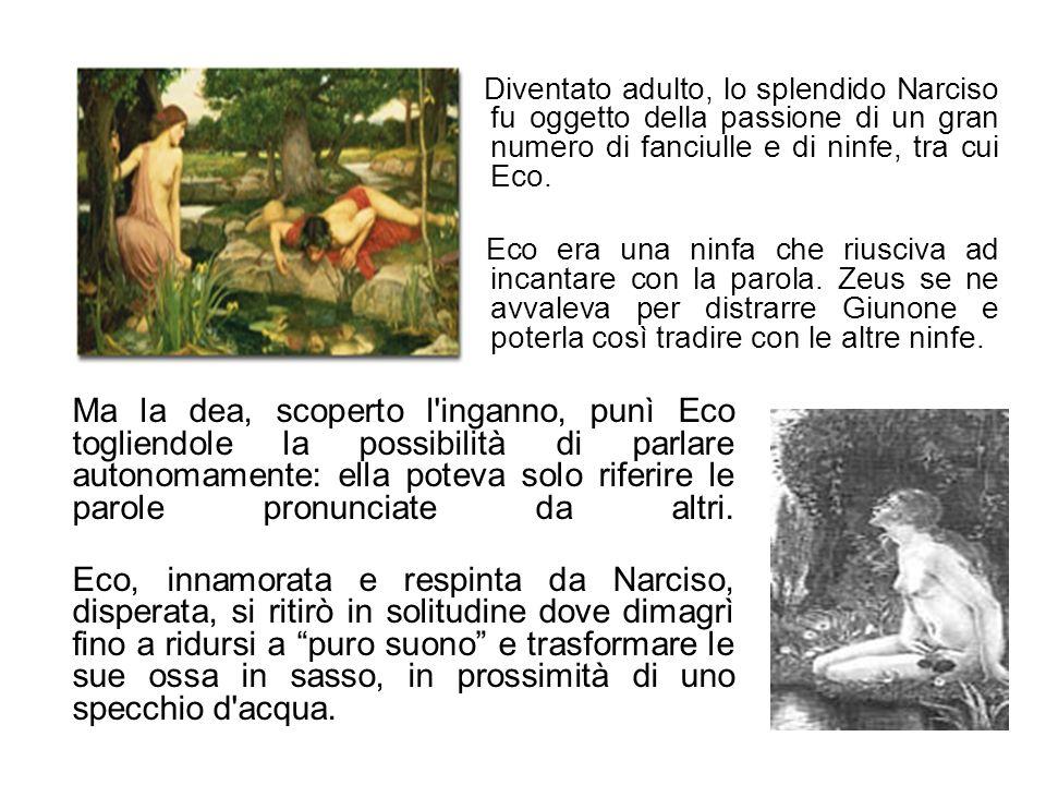 Diventato adulto, lo splendido Narciso fu oggetto della passione di un gran numero di fanciulle e di ninfe, tra cui Eco. Eco era una ninfa che riusciv