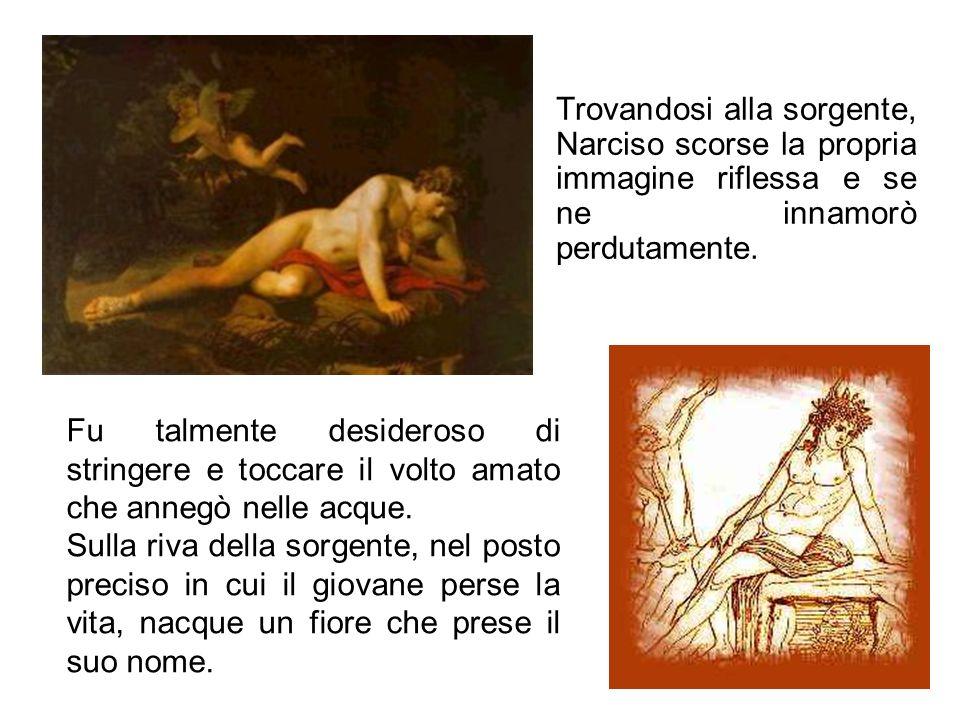 Trovandosi alla sorgente, Narciso scorse la propria immagine riflessa e se ne innamorò perdutamente. Fu talmente desideroso di stringere e toccare il