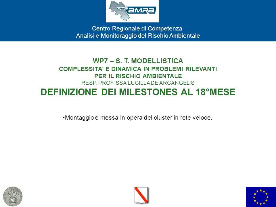 Centro Regionale di Competenza Analisi e Monitoraggio del Rischio Ambientale WP7 – S. T. MODELLISTICA COMPLESSITA E DINAMICA IN PROBLEMI RILEVANTI PER