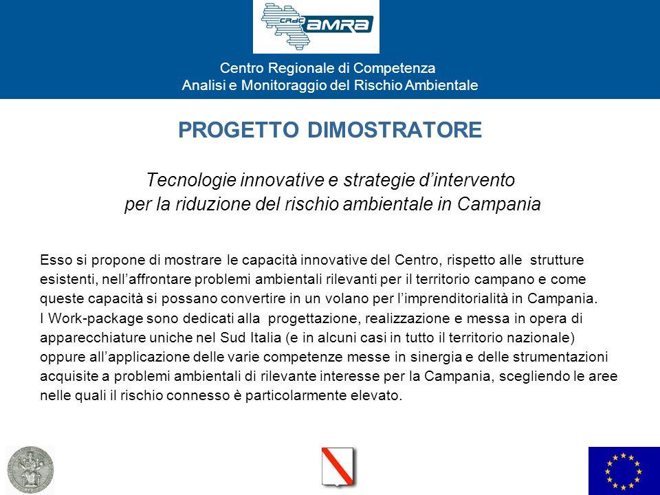 Centro Regionale di Competenza Analisi e Monitoraggio del Rischio Ambientale PROGETTO DIMOSTRATORE Tecnologie innovative e strategie dintervento per l