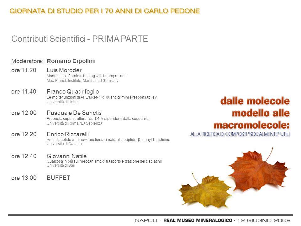 Contributi Scientifici - PRIMA PARTE Moderatore: Romano Cipollini ore 11.20 Luis Moroder Modulation of protein folding with fluoroprolines Max-Planck-
