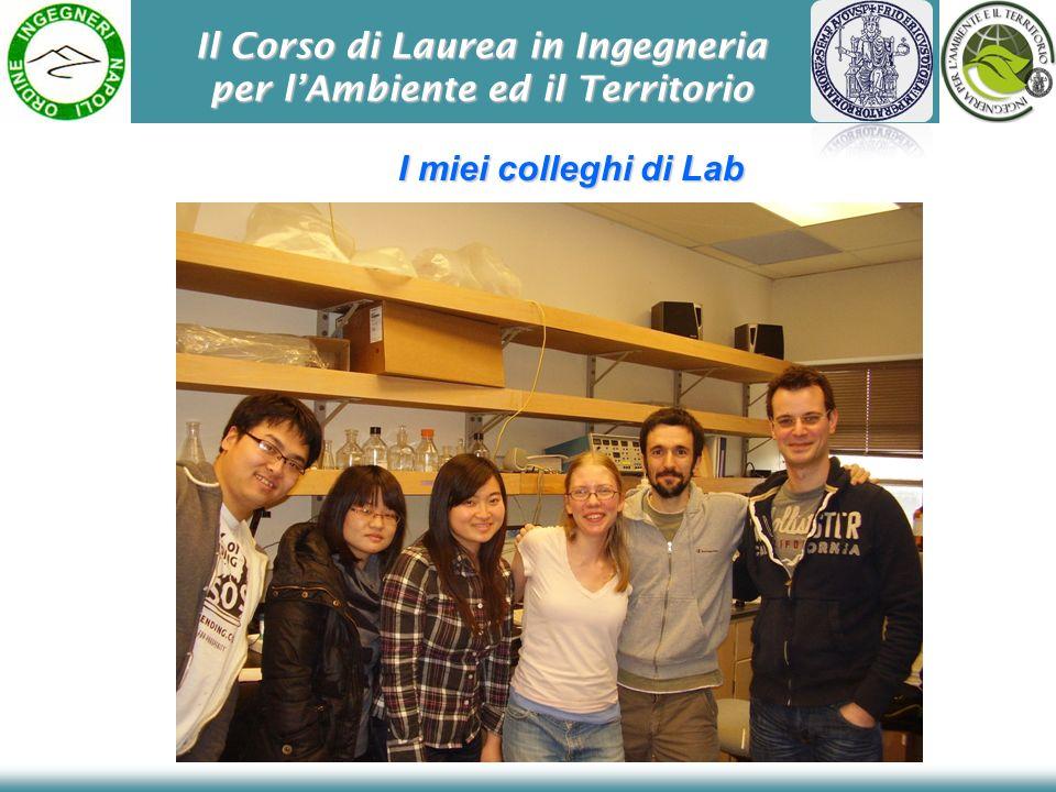 Il Corso di Laurea in Ingegneria per lAmbiente ed il Territorio I miei colleghi di Lab