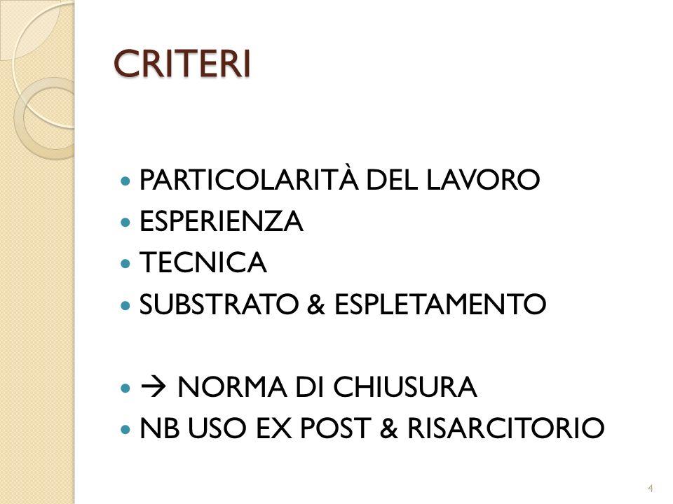 CRITERI PARTICOLARITÀ DEL LAVORO ESPERIENZA TECNICA SUBSTRATO & ESPLETAMENTO NORMA DI CHIUSURA NB USO EX POST & RISARCITORIO 4