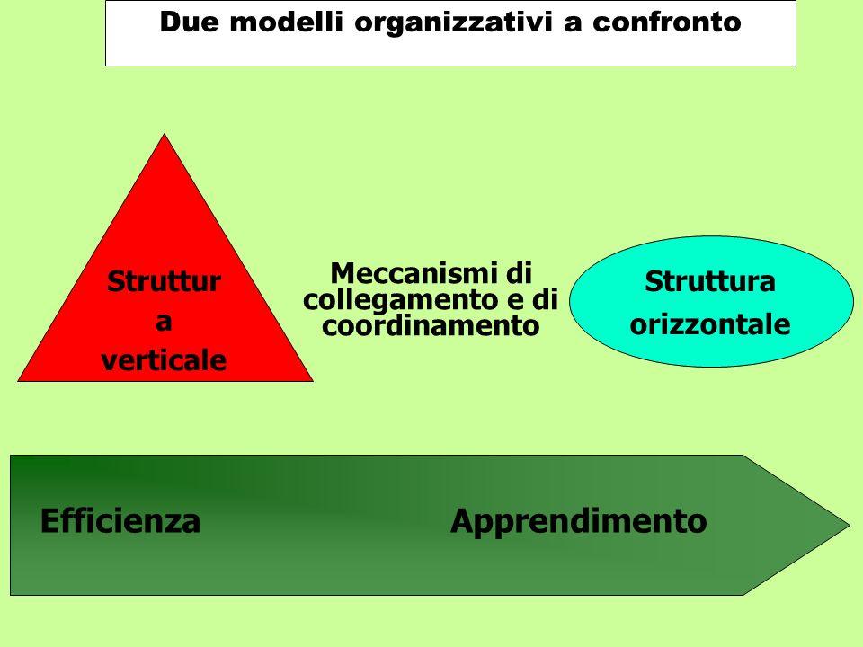 Struttur a verticale Struttura orizzontale Meccanismi di collegamento e di coordinamento EfficienzaApprendimento Due modelli organizzativi a confronto