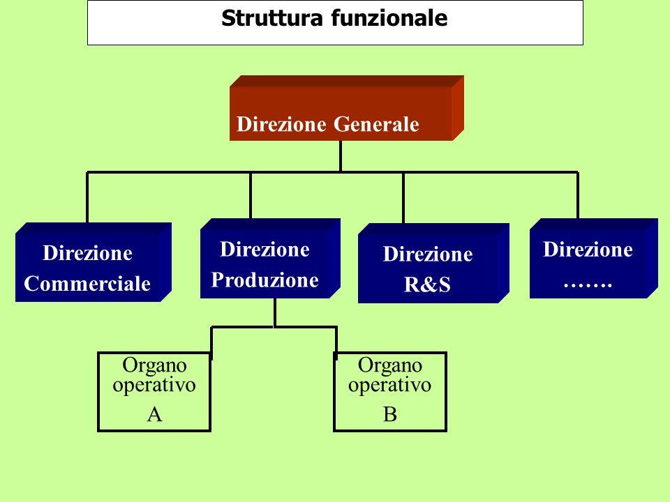 Organo operativo B Organo operativo A Struttura funzionale Direzione Commerciale Direzione Produzione Direzione R&S Direzione ……. Direzione Generale