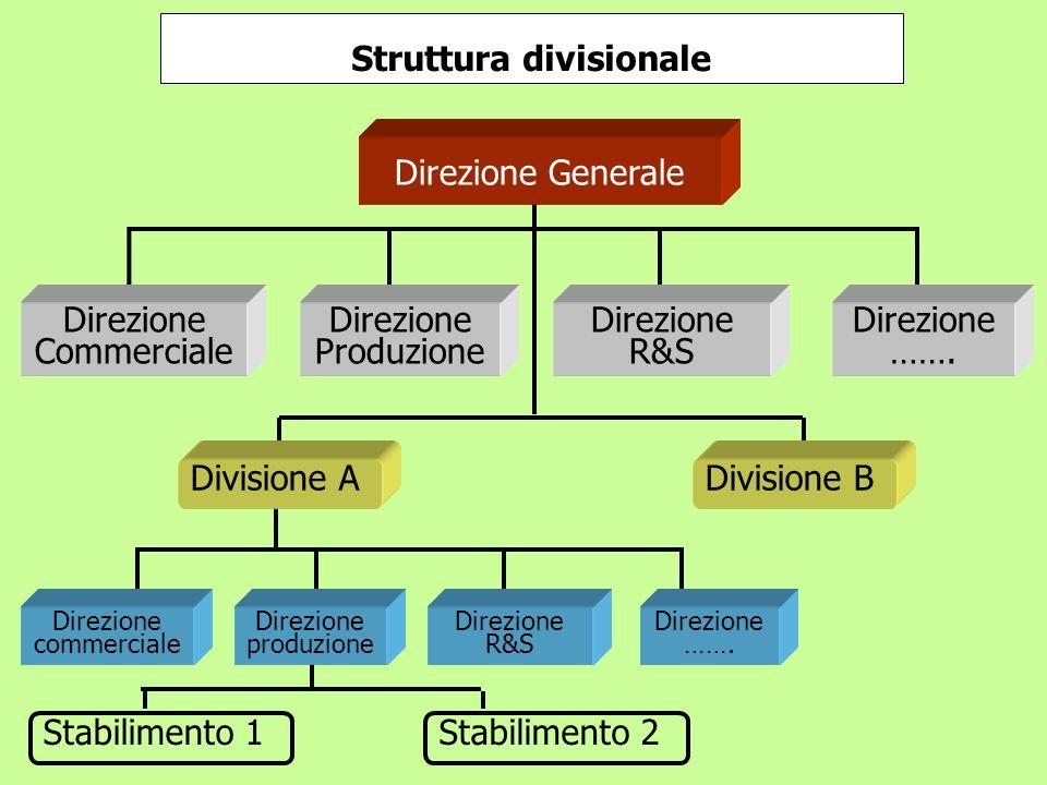 Struttura divisionale Stabilimento 1Stabilimento 2 Direzione Commerciale Direzione Produzione Direzione R&S Direzione ……. Direzione commerciale Direzi